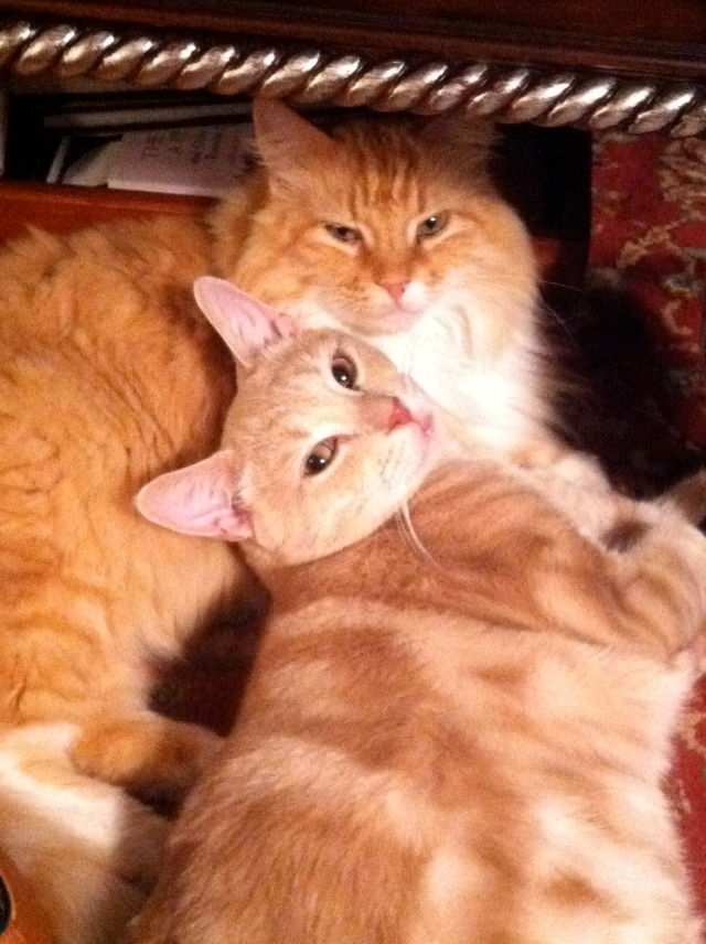 Peaches and Percy