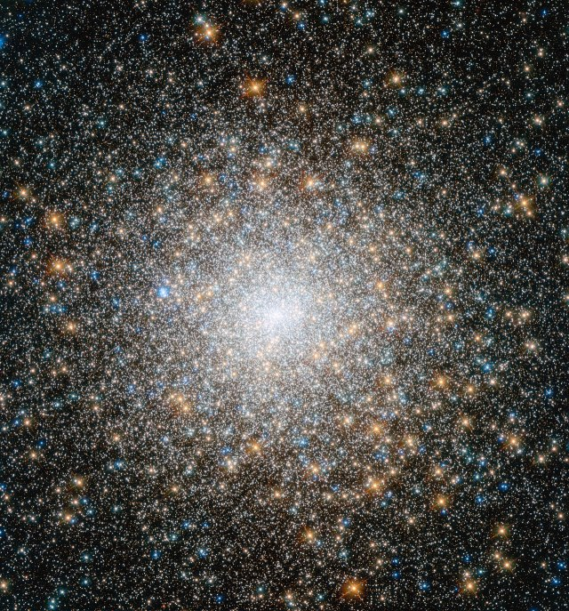 This cluster of stars is known as Messier 15, and is located some 35 000 light-years away in the constellation of Pegasus (The Winged Horse). It is one of the oldest globular clusters known, with an age of around 12 billion years. Both very hot blue stars and cooler golden stars can be seen swarming together in the image, becoming more concentrated towards the cluster's bright centre. Messier 15 is one of the densest globular clusters known, with most of its mass concentrated at its core. As well as stars, Messier 15 was the first cluster known to host a planetary nebula, and it has been found to have a rare type of black hole at its centre. This new image is made up of observations from Hubble's Wide Field Camera 3 and Advanced Camera for Surveys in the ultraviolet, infrared, and optical parts of the spectrum.